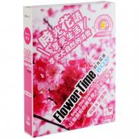 """Ароматизатор Kogado Flower Time """"Sakura"""""""