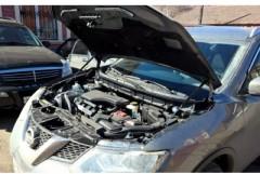 Газовые упоры капота для Nissan X-Trail (T32) '14-, 2 шт. (Novline)